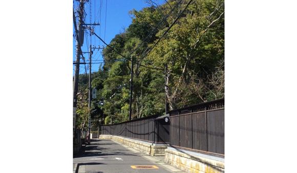 板塀の裏路地