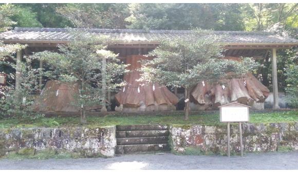 宇奈岐日女神社(うなぎひめじんじゃ)
