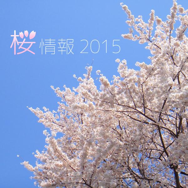 桜情報 2015