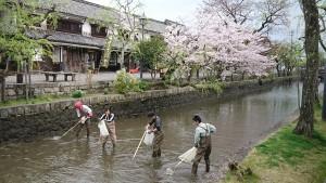 倉敷川清掃1
